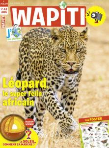 Les petites bêtes - Fiche pédagogique Wapiti